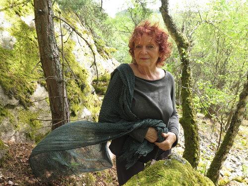 LA SÉLECTION 2020 DU PRIX DU ROMAN D'ÉCOLOGIE (2). À l'affût des cerfs et des mots. Entretien avec Claudie Hunzinger autour des « Grands cerfs »